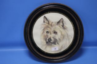 A FRAMED AND GLAZED WATERCOLOUR DEPICTING A CAIRN TERRIER
