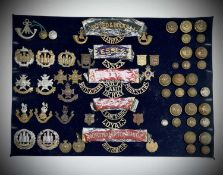 43rd - 48th Foot. A display card containing cap badges, collar dogs, shoulder titles and buttons.