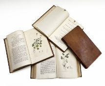 JAMES SOWERBY. 'English Botany; or, Coloured Figures of British Plants, With Their Essential