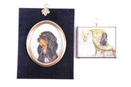 Margaret Dovaston (1884 - 1954, portrait miniature of a King Charles Cavalier on a Victorian chair