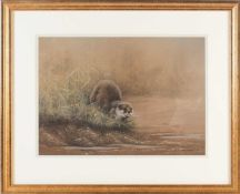 John Naylor (b.1960) British, an otter on a riverbank, pastel on paper, signed and dated 1991, 24.