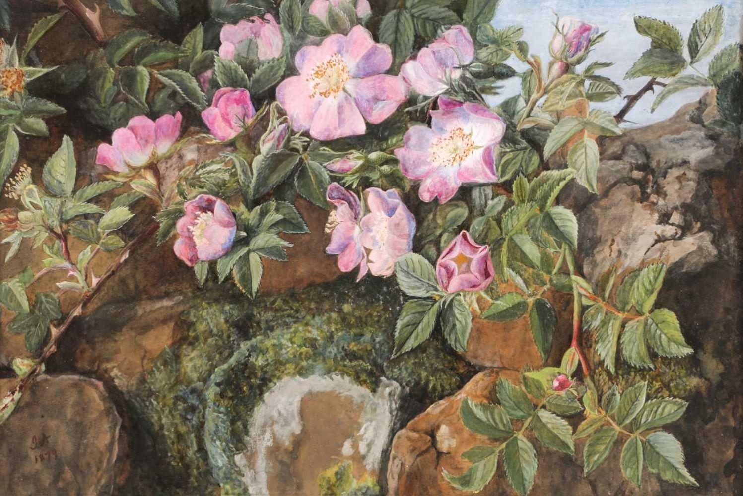 Fine Art & Antiques Timed Auction