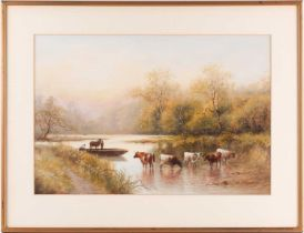20th century British school, a group of cattle in shallow water, unsigned watercolour, 37 cm x 54