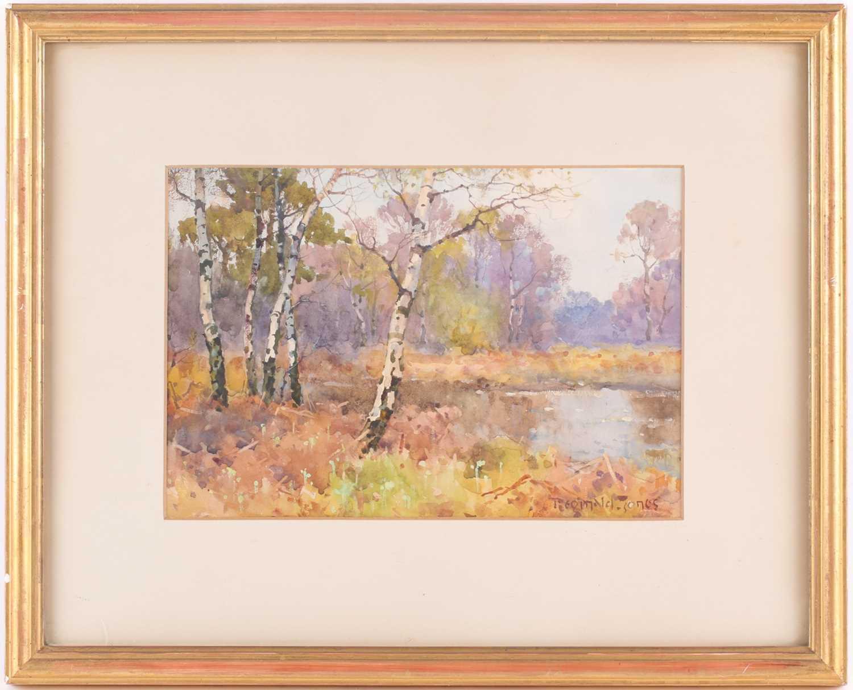 Reginald T Jones, (1857-1920), a scene of silver birch trees in a river landscape, watercolour,