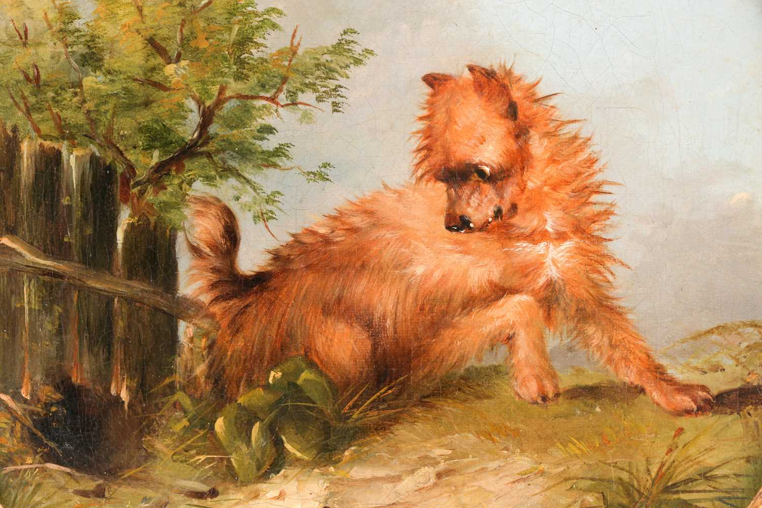 Circle of George Armfield (1808-1893), Terrier in a landscape, oil on canvas, 20.5 cm x 20.5 cm, - Image 2 of 6
