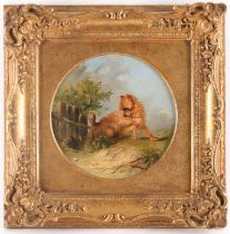 Circle of George Armfield (1808-1893), Terrier in a landscape, oil on canvas, 20.5 cm x 20.5 cm,