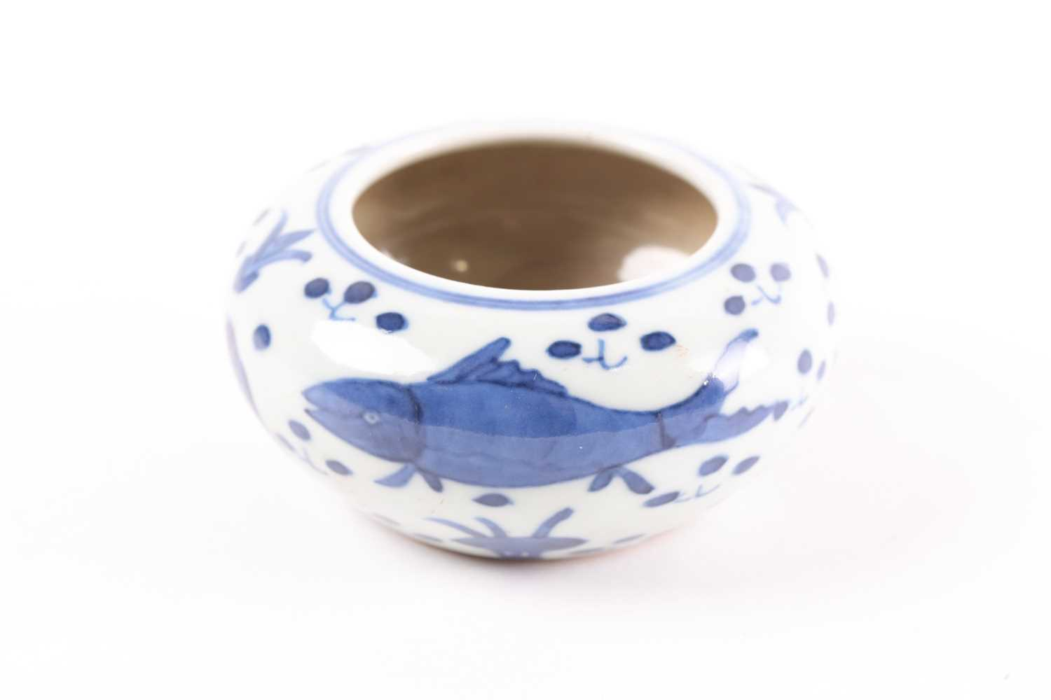 A Chinese blue & white brush washer, of shallow circular form, painted with fish amongst plants,