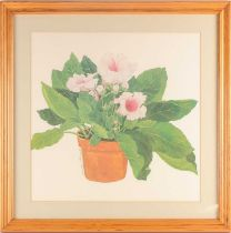Sandra Touiaick, 20th century, study of a potted hibiscus, pencil, watercolour and gouache, signed
