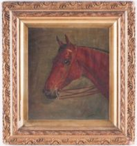 Walter Herbert Wheeler (1878-1960), study of a horse's head, oil on board, signed and dated 1903, 23
