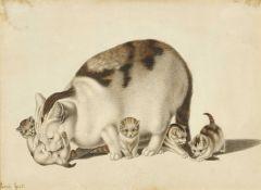 MIND, GOTTFRIED: Katzendarstellungen.