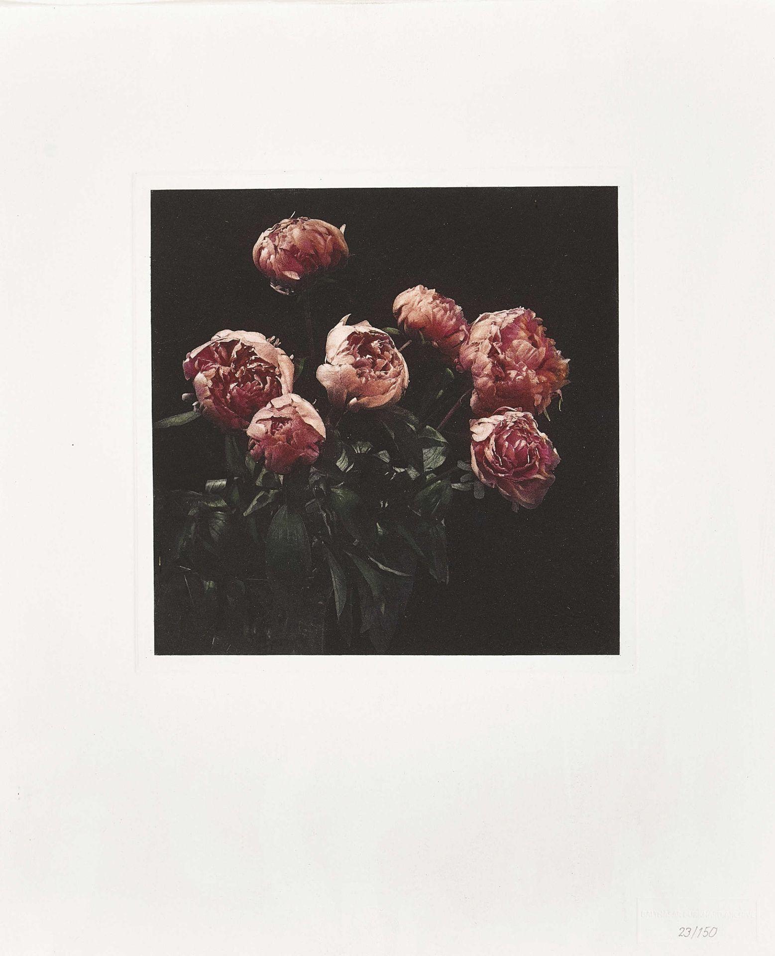 "BURKHARD, BALTHASAR: ""Flowers""."