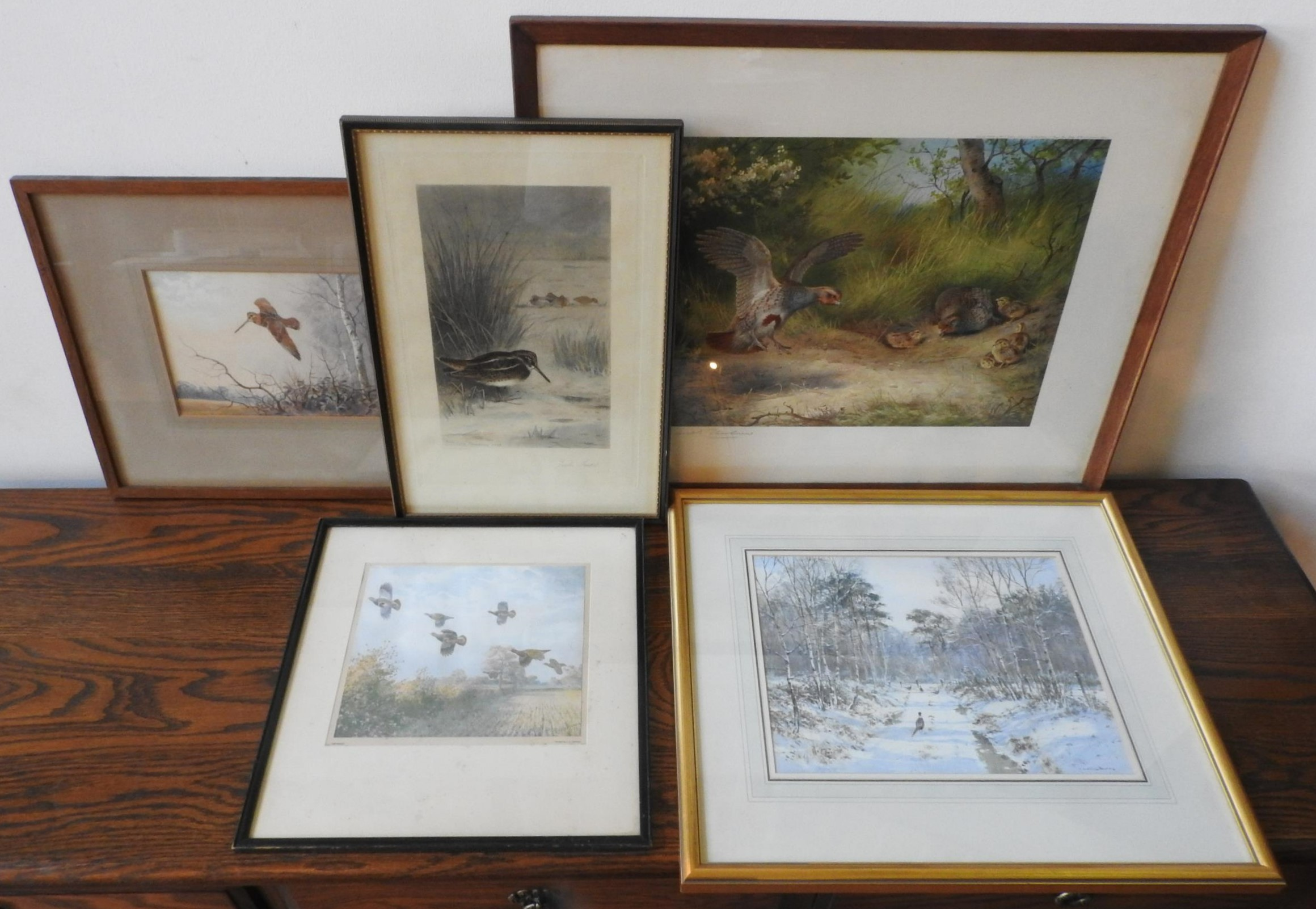 A SIGNED ARCHIBALD THORBURN PRINT OF PARTRIDGES, THREE ORNITHOLOGICAL PRINTS AND WATER COLOUR, the