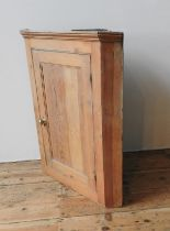 A PINE PANELLED CORNER CUPBOARD, 98 x 76 x 44 cm