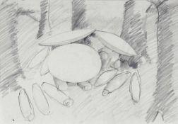 Tony Cragg Liverpool 1949 - lebt in Wuppertal Generations. Zwei Bleistiftzeichnungen. 1987/88.