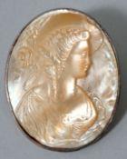 Brosche mit Profil einer DamePerlmutt in Metall gefasst, Sammlernummerierung auf der Rücksei