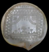 Muschel mit LochgravurPerlmutt Sammlernummerierung auf der Rückseite, D. 14,5 cm Shell with