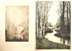 Grafik / etchings