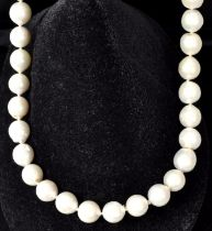 Collier / Pearl necklace