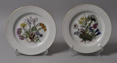 Teller, Meissen / two plates