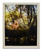 λ RANKIN (BRITISH B. 1966), NUDE WITH WINGS PERCHING ON A TREE BRANCH