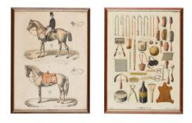 Thirty-six chromolithographs from Album de Sllerie Cercle Militaire du Camp-de-chalons