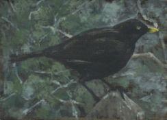 Helen Fay, Blackbird, 2020