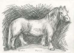 Helen Fay, Welsh Pony, 2020