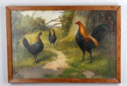 H Dixon (British early 20th century), Rooster with chickens