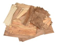 A selection of hand-sawn English walnut and other veneers