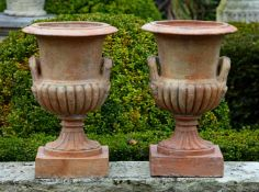 A pair of terracotta vases