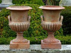 A pair of terracotta vases