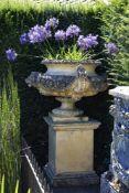 A stone composition garden urn on plinth, in Edwardian taste