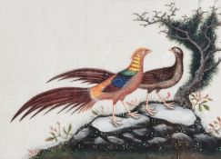 A set of eight Chinese Export watercolours on silk paintings of birds
