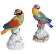 Two similar Meissen models of parrots