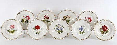 Eight Staffordshire porcelain plates