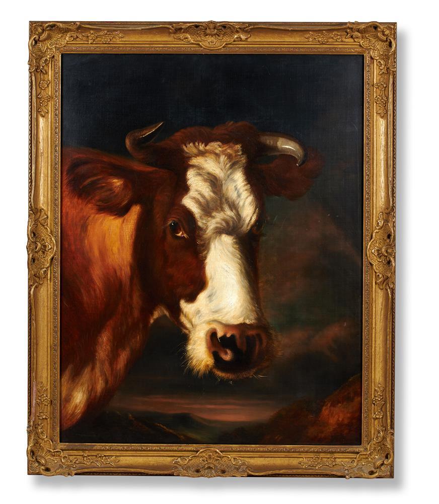 THOMAS SIDNEY COOPER R.A. (BRITISH 1803-1902), HEAD OF A COW