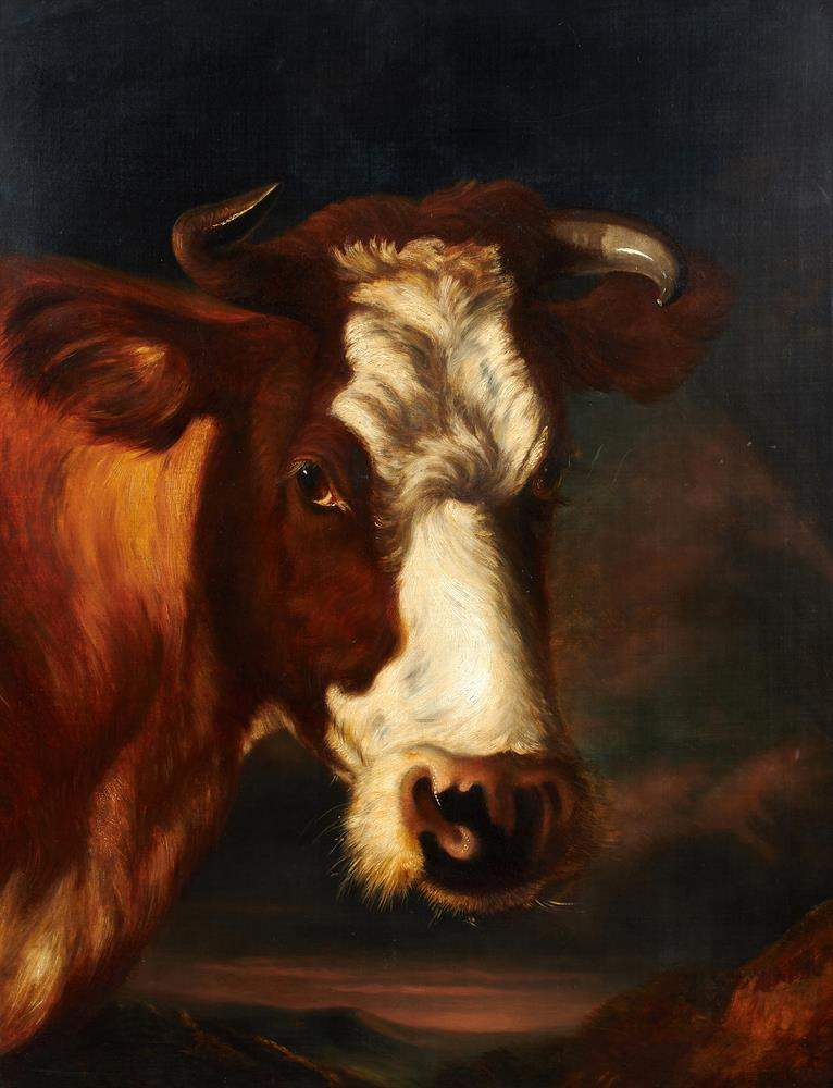 THOMAS SIDNEY COOPER R.A. (BRITISH 1803-1902), HEAD OF A COW - Image 2 of 2