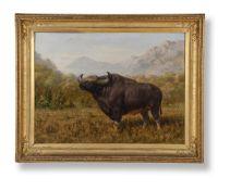 JOSEPH WOLF (GERMAN 1820-1899), THE BIG BULL BISON