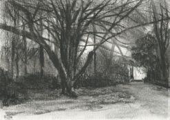 Michael Wann, Hazelwood Tree, 2021