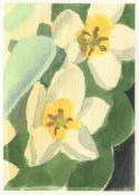 Una Ursprung, White Tulip, 2021