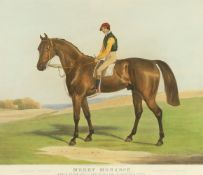C A Turner after F C Turner a study of the racehorse 'Merry Monarch'