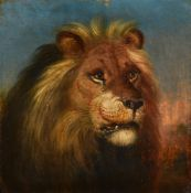 ATTRIBUTED TO WILLIAM HUGGINS (BRITISH 1824-1910), THE HEAD OF A LION