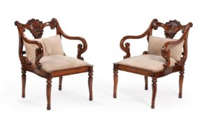 A pair of exotic hardwood open armchairs in Anglo-Indian early 19th century style