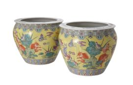 A pair of Chinese earthenware fish bowls