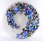 Sam Trophia 'Butterfly Art'