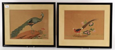 A set of six 19th century Indian watercolours of exotic birds