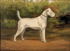J. Stevenson (British c. 1902) 'The celebrated Wire Haired Terrier Alport Frost'