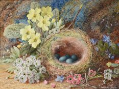 Vincent Clare (British 1855-1930), Still lives with bird's nest and fruit (2)