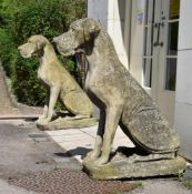 A PAIR OF COMPOSITION STONE MODELS OF GREAT DANE DOGS, CONTEMPORARY