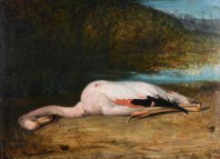 MATHILDE MARTIN (19TH CENTURY), 'THE FLAMINGO'
